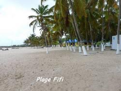 balade, désirade, plage, ile guadeloupe, antilles
