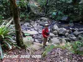 rivière sans nom, tete allegre, baille argent, basse terre nord, guadeloupe