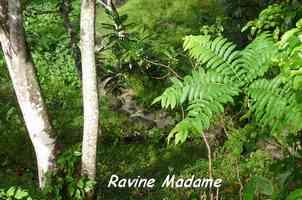 riviere Madame