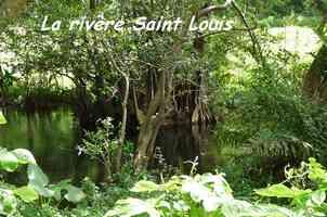 Rivière saint Louis, Grand Bourg, Marie Galante