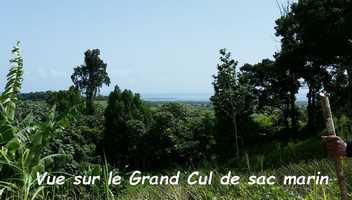 route bis conodor Ste Rose, Guadeloupe