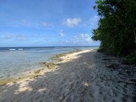 sentier littoral port louis grande terre guadeloupe