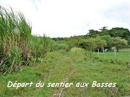 Départ du Sentier Murat, Grand Bourg, Marie Galante