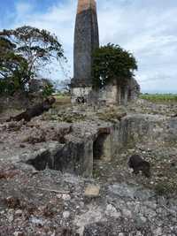 Trianon, cheminée M Galante