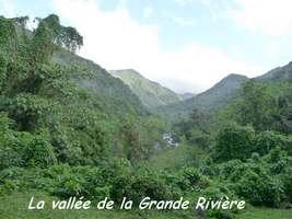 vallée grande rivière grivelière