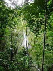 vue cascade, chutes moreau, goyave, basse terre nord, guadeloupe