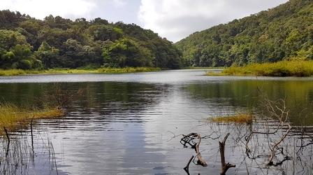 vue grand etang Guadeloupe
