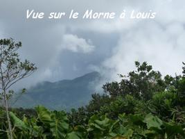 Vue sur le Morne à Louis, Piton de Bouillante