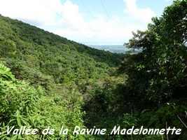 vallée rivière Madelonnette, Contrebandiers, Guadeloupe
